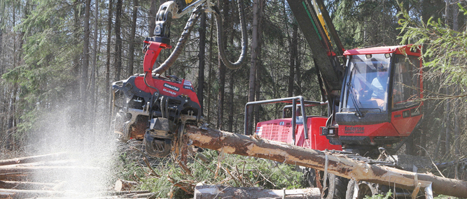Timber Ridge Logging From Hand Felling To The Forefront