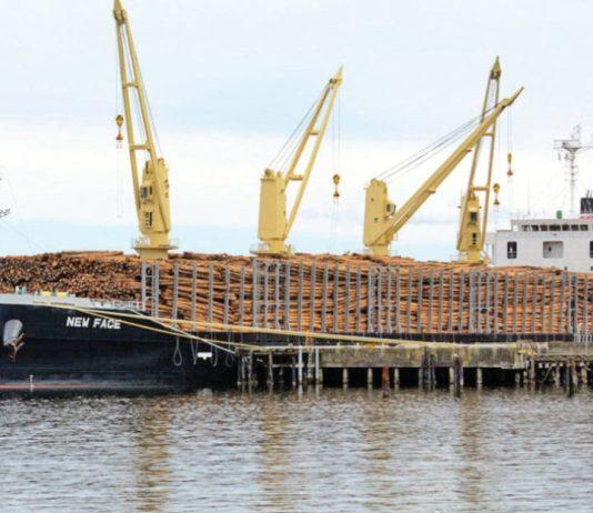 Exporting-Ship-Grow-Business