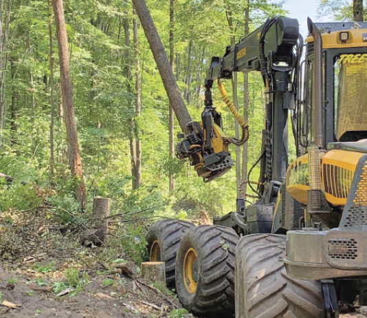BUCKLEY, Michigan – Just how much more productive is cut-to-length logging compared to tree-length logging? Consider two people harvesting the same amount of timber in a day as four people once did with chain saws and skidders. Then, look ahead to exceeding that production. Skylar Olmstead does.
